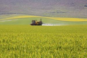 Crop sprayer in field